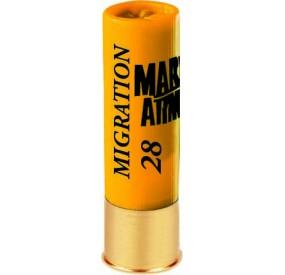 MIGRATION 28