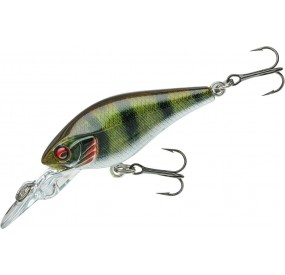 PN PX BABY CB 40 MR LIVE PERCH